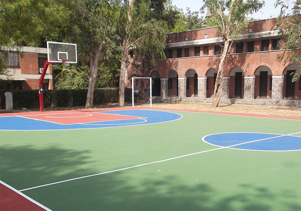 Outdoor & Indoor Sports Surfaces in Wilson garden